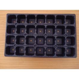 5 plaques de semis - 28 alvéoles