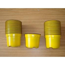25 pots de 9 cm de couleur jaune