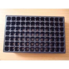 5 plaques de semis - 84 alvéoles