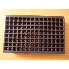 5 plaques de semis - 112 alvéoles