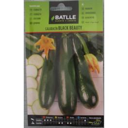 Graines - Courgette Black Beauty