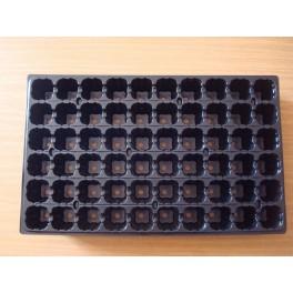 5 plaques de semis de 60 alvéoles