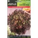 Graines - Salade - Feuille de chene rouge