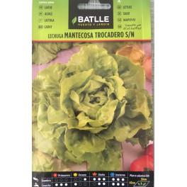 Graines - Salade - Laitue Mantecosa