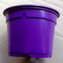 25 pots de 10,5 cm couleur violet