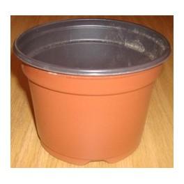 50 Pots de 10.5 cm - 0,48 L