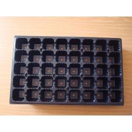 5 plaques de semis - 40 alvéoles